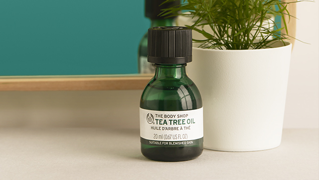 THE BENEFITS OF TEA TREE OIL